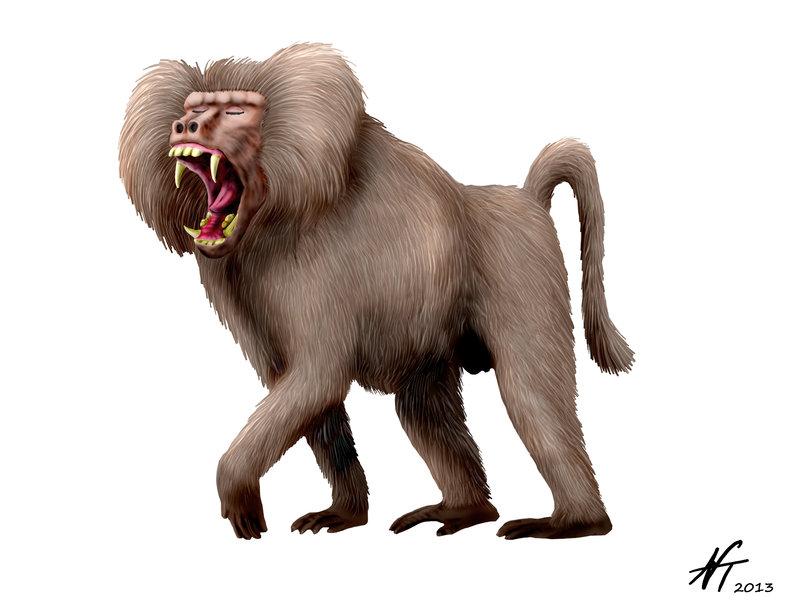 Dinopithecus
