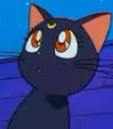 Luna in Sailor Moon R the Movie