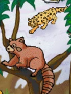 MSB Snow Leopard and Red Panda
