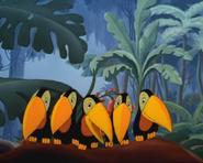 Mm-1948-03-19-billed-birds
