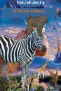 NR1 African Animal 2000 Poster