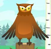 Owl mib