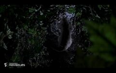 Smokey falls into the river