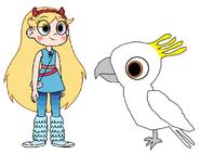 Star meets Sulphur-Crested Cockatoo