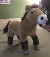 Prizz the Przewalski's Horse