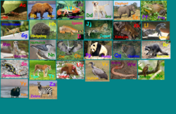 Animal Alphabet 5.png