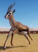 Gazelle, Thomson's (Planet Zoo)