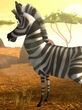 Hugo the Zebra