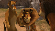 Madagascar2-disneyscreencaps.com-4788