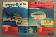Predator Splashdown (8)