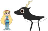 Star meets Blackbuck