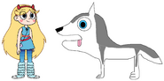 Star meets Siberian Husky