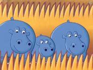 64 Zoo Lane Hippos