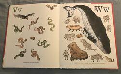 8- An Animal Alphabet (12).jpeg