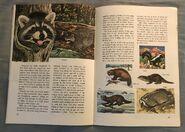 A Golden Exploring Earth Book of Animals (13)
