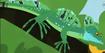 Basalisk Lizard.jepg