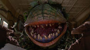 Little shop of horrors (3)