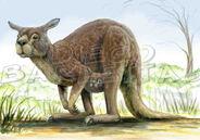 Procoptodon by glyptodon graphycus-d64dz4h