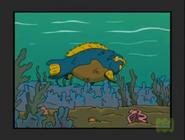 TWT Parrotfish