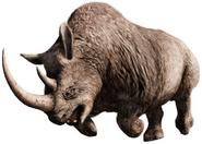 Woolly Rhinoceros FCP