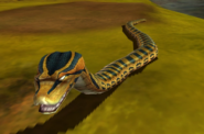Anaconda IC