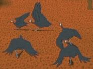 Kirikou Helmeted Guineafowl