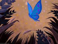 Caterpillar as Butterfly