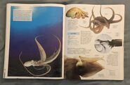 DK Encyclopedia Of Animals (118)