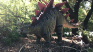 Dallas Zoo Stegosaurus