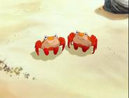 Little Polar Bear 2 Crabs