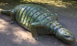 Scolosaurus-boraszoo.jpg