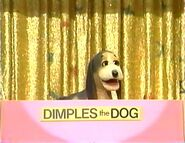 Dimples the Dog Learns to Share
