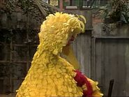 Episode 2224- Wanting to dream, Elmo hops into Big Bird's arms, falling asleep instantly