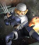 Sheik in Super Smash Bros. Brawl