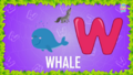 Baby Time Whale