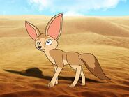 Rileys Adventures Fennec Fox