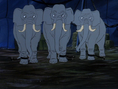 Scooby-Doo! African Elephants
