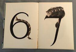 Animal Numbers (Bert Kitchen) (4).jpeg