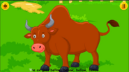 Animal Sounds Song Bull