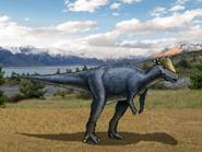 Dm pachycephalosaurus