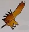 Eagle usborne my first thousand words