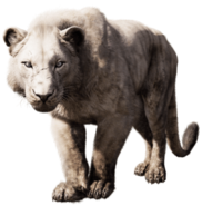 Far cry primal cave lion