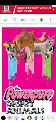 PPDesertAnimals2016 Poster.png
