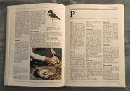 The Kingfisher Illustrated Encyclopedia of Animals (112)