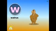 EFlash Walrus