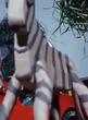 Gumby Zebra