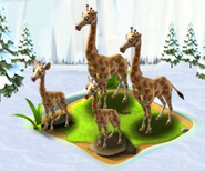 Ice Age Giraffes