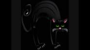 Safari Island Black Cat