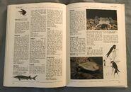 The Kingfisher Illustrated Encyclopedia of Animals (156)