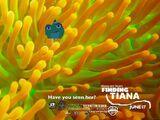 Finding Tiana